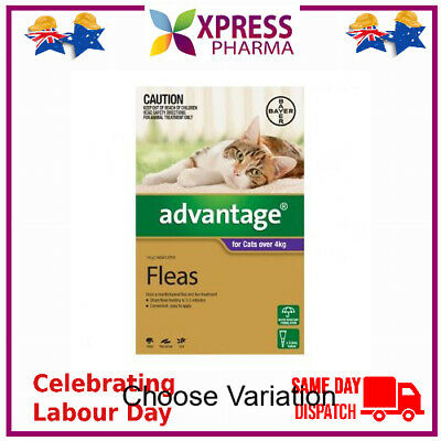 Advantage Fleas treatment and prevention of fleas on Cats Over 4 kgs NEW XPRESS