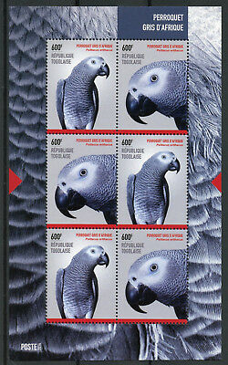 Togo 2014 MNH African Grey Parrot 6v M/S II Perroquets Parrots Birds Stamps
