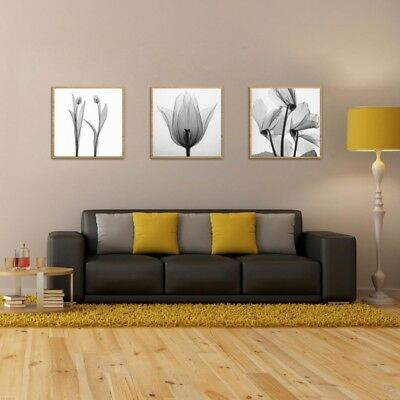 3pcs Flower Art Oil Painting Canvas Print Pictures For Home Room Decor Unframed