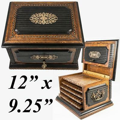 Rare Antique French c.1850s Cigar Caddy, Cabinet with 5 Trays, Lock with Key