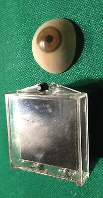 vintage glass eye prosthetic In Holder Brown
