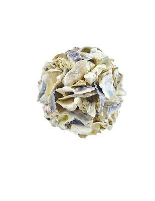 Oyster Shell Orb 4""