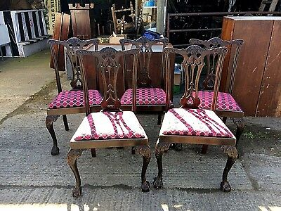 Set of 5 Chippendale Style Mahogany Ball and Claw Dining Chairs