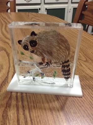 Vintage Reverse Carved And Painted Clear Lucite Raccon Heavy Block Figure