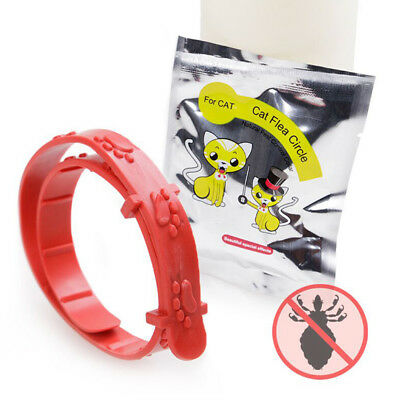 1/3pcs FLEA COLLAR Pet Cat Kitten Puppy Dog Adjustable Anti Tick Pest Control