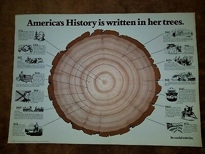 America's History in her Trees - Poster
