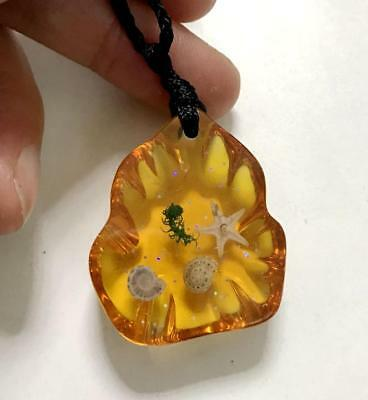 noble insect starfish jewelry  sea star  yellow hulu style pendants yqt01