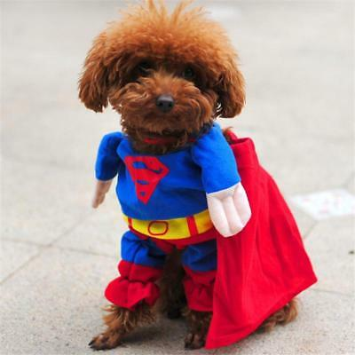 NEW Funny Pet Cat Dog Puppy Clothes Costumes Apparel T Shirt Superman Suit  ^