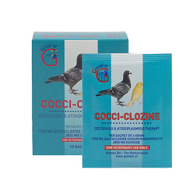 Pigeon Product - Cocci-clozine - 5 sachets - coccidiosis - by Giantel