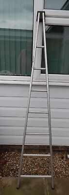 "Window cleaners ""A"" frame ladder. Single section 2m long."