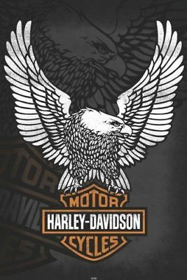 HARLEY-DAVIDSON Eagle Logo authentic original published paper poster 16x20