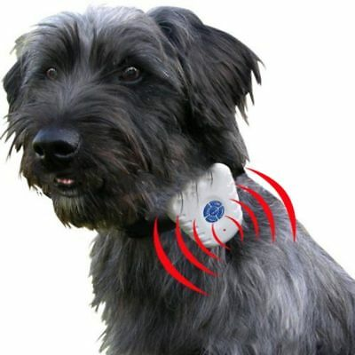 Mini Anti Bark Dog Training Aid Collar Stop Barking Control Ultrasonic Sound