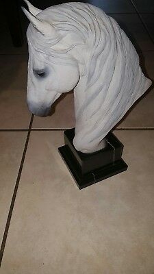 CARLOS ESTEVEZ CALAHA ANDALUSIAN HORSE BUST..POLY CROME MARBLE AND RESIN .7lbs..