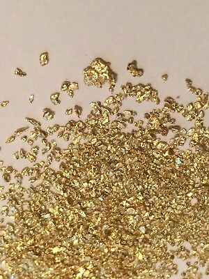 Gold Paydirt 100% Unsearched Guaranteed Added ALASKAN GOLD! Panning Nuggets