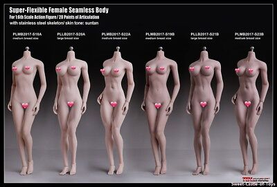 1/6 Phicen Steel Skeleton Seamless Pale Mid Bust S22A Female Body Toy TBLeague
