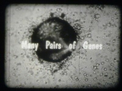 Many Pairs Of Genes 16mm short film 1960 B&W Dr. Burr Roney