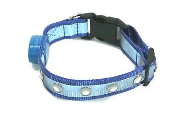 NEW Wags Forever 5 LED Jewel Light Up DOG Pet COLLAR Flashing Bright Safety BLUE