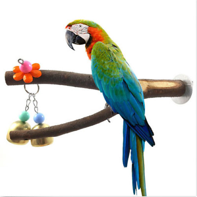 1x Parrot Raw Wood Fork Stand Gnawing Toy Hamster Branch Perches Bird Cage Nice