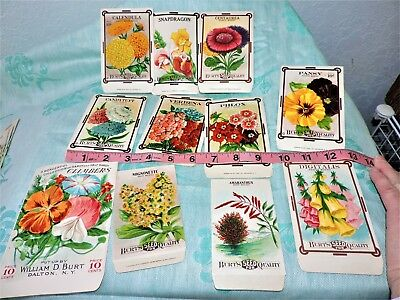 Burt's Seeds Packet Assortment (11)  rare ones!  Excellent condition new