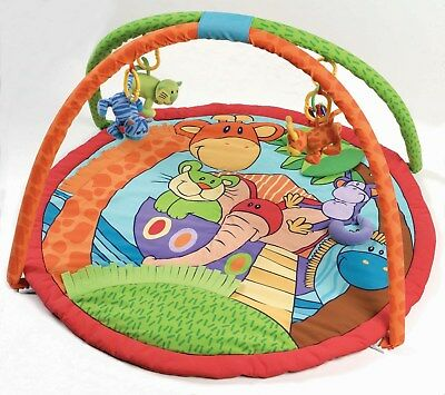 Playgro Noah's Ark Discovery Play Gym
