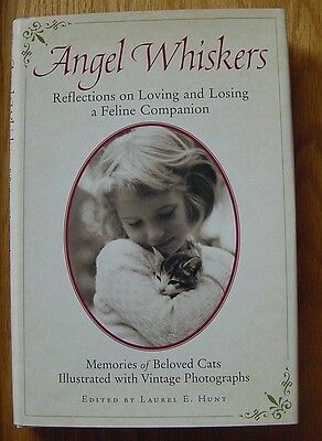 Angel Whiskers Relections of Loving & Losing a Feline Laurel Hunt Cat Kitten