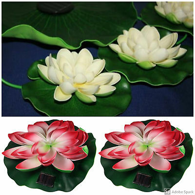"Solar Powered Pond Decor Kit, Includes 7"" Lily, 10"" Lily & White 3 Lily Grouping"