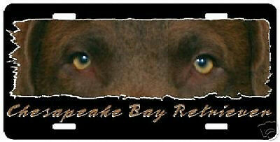 """Chesapeake Bay Retriever """" The Eyes Have It """" License Plate"""