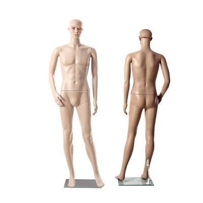 Display Mannequin Dummy Full Body Stand Shop Window Display Tailor Male Type UK
