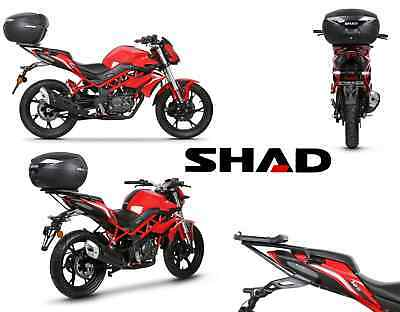 Fixings support SHAD BENELLI BN125 de 2018 BN 125 suitcases top-case motorrad