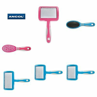 Ancol Ergo Cat Grooming, Shedding Blade, Slicker Brush and Soft Brush & more