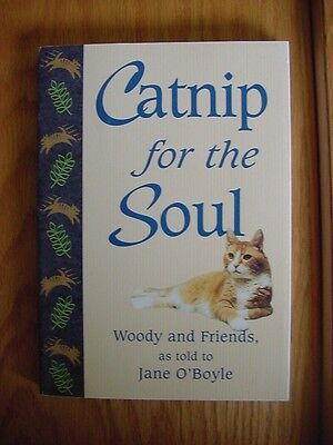 Cat Kitten Book Feline Catnip for the Soul Chicken Soup Jane O'Boyle Book