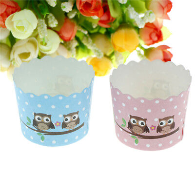 50pcs Cupcake Muffin Tin Paper Cases Hard Paper Muffin Cup Owl Pattern