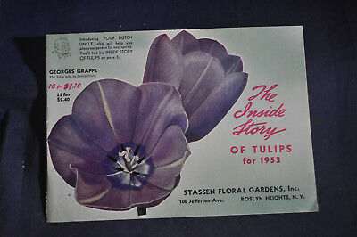 1953 The Inside Story of Tulips - Stassen Floral Garden, Roslyn Heights, NY