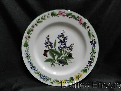 "Royal Worcester Worcester Herbs: Salad Plate (s), 8 3/8"", Sage, As Is"