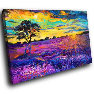 SC372 Colourful Abstract Nature Landscape Canvas Wall Art Large Picture Prints