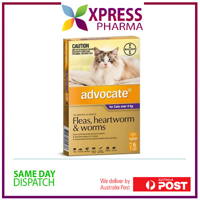 Advocate Allwormer and Flea for Large Cats Over 4 kgs Wormer
