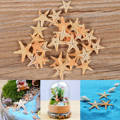 20x Mini Starfish Sea Star Aquarium DIY Craft Wedding Home Decor Landscape