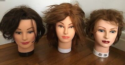 Lot Of 3 Burmax Cosmetology Mannequin Heads