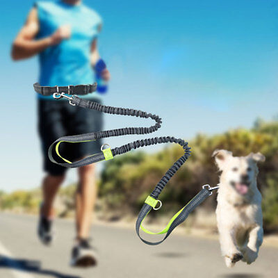 Retractable Hands Free Dog Leash For Running Large Dogs Double Elastic Leash