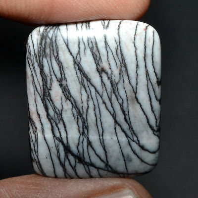 Cts. 29.35 Natural Linear Picasso Jasper Cabochon Cushion Cab Loose Gemstones