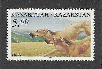 Dog Art Body Study Portrait Postage Stamp SALUKI Coursing Kazakhstan 1996 MNH