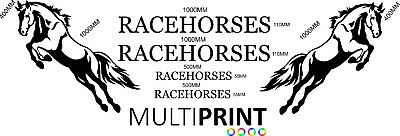 Racehorse Sticker Kit Box Van Lorry Graphics Stickers Decals Vinyl Decal Hor5