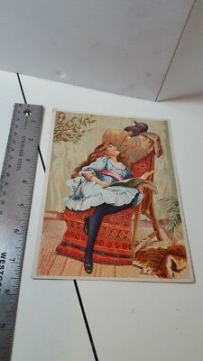Soapine Large Antique Victorian Trade Card Girl & Kitten 1887