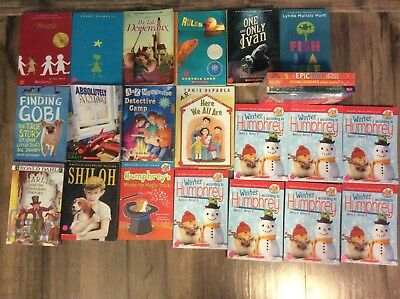 NEW LN 3rd 4th Grade Chapter Books AR Classroom Homeschool Library