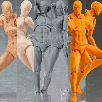 Male/Female Action Figure Model Doll Human Body Toy For Anime Painting Drawing