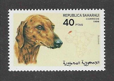 Dog Art Head Portrait Postage Stamp SALUKI SLOUGHI Spanish Sahara 1998 MNH