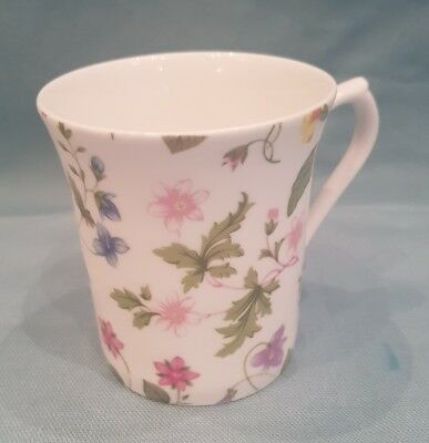 Queens Fine Bone China Country Meadow  Colourful Floral Decorated Mug-England-GC