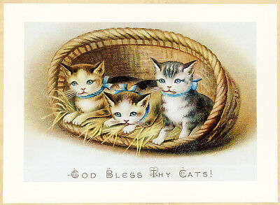 New God Bless Thy Cats Blue Bow Kittens in Basket 5x7 Art Print Victorian Card