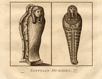 """Egyptian mummies"". MIDDLETON 1779 old antique vintage print picture"