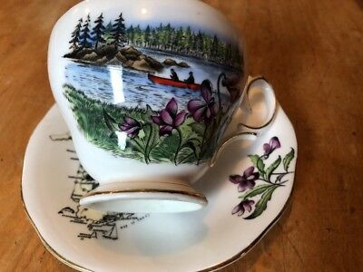 Queen Anne Cup And Saucer New Brunswick Canada -England